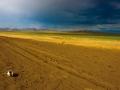 Mongolei_Frank_Riedinger_35